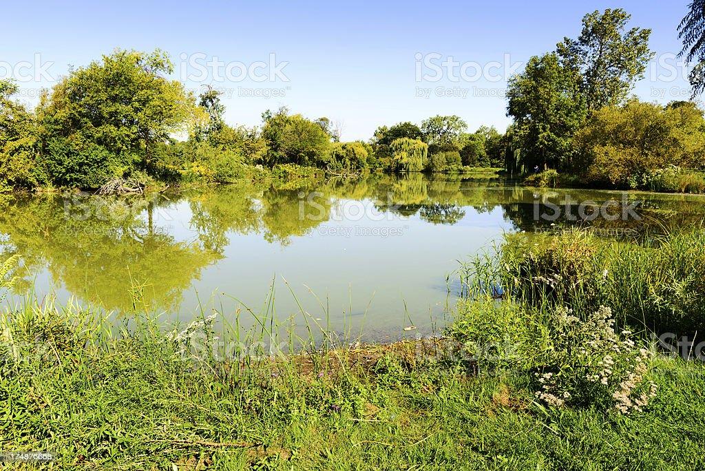 Lagoon in Washington Park, Chicago royalty-free stock photo