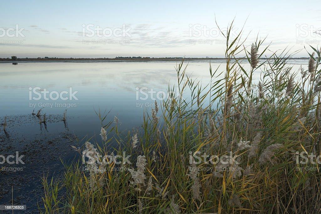 Lagoon landscape royalty-free stock photo