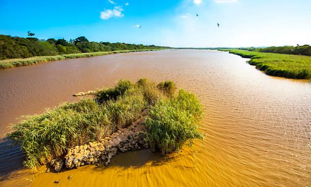 lagoon of st lucia south africa - estuário imagens e fotografias de stock