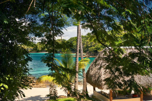 Lagoon view from the interior of the Contadora island in Pacific Ocean stock photo