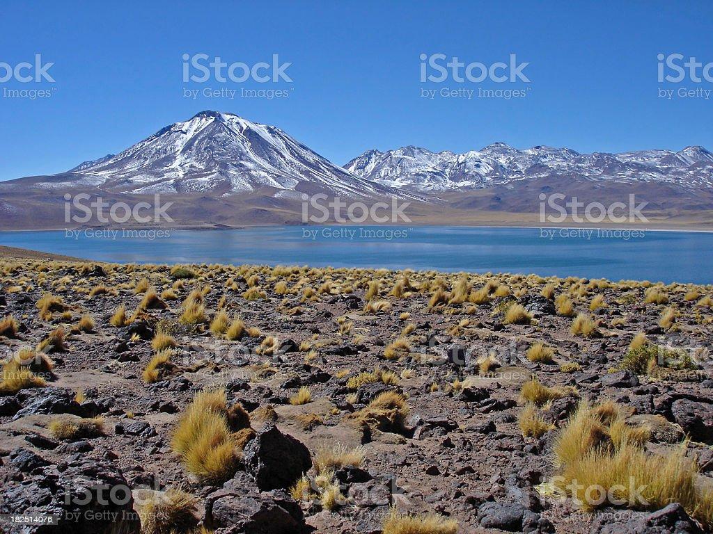 Laguna and Cerro Miscanti stock photo
