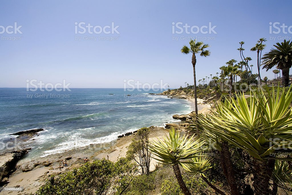 Laguna Beach coastline with palm trees and ocean waves royalty-free stock photo