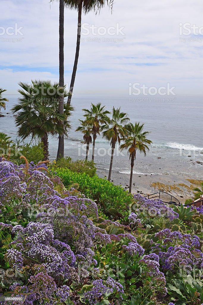Laguna Beach View royalty-free stock photo