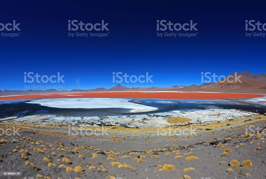 Laguna Colorada Bolivia, fisheye prespective stock photo