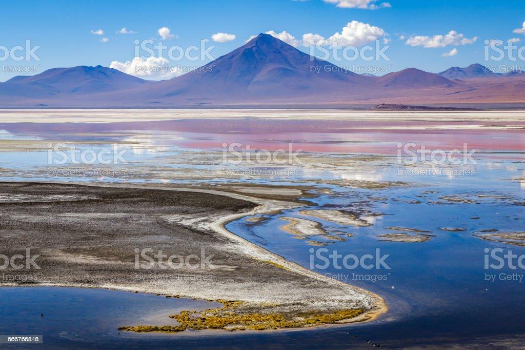 Laguna Colorada (Red Lagoon) foto stock royalty-free