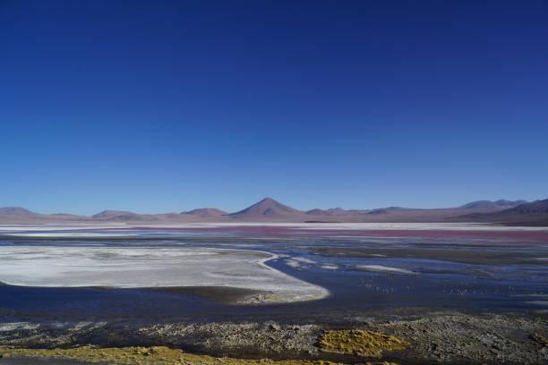 Laguna colorada, Salar de Uyuni, Bolivie stock photo