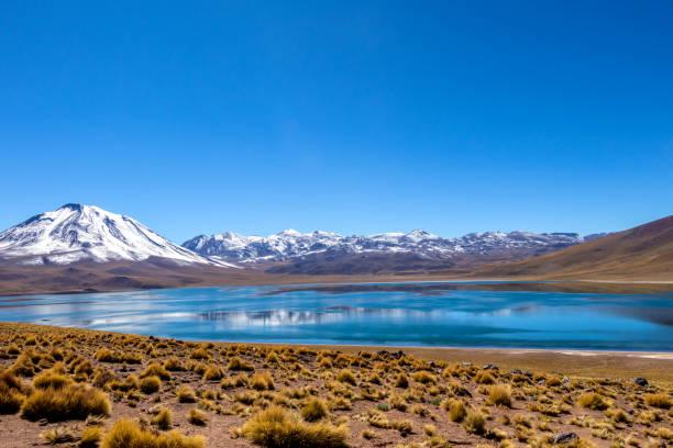 南美洲智利北部阿塔卡馬沙漠安第斯山脈高處的米斯康蒂拉古納 - 阿爾蒂普拉諾山脈 個照片及圖片檔
