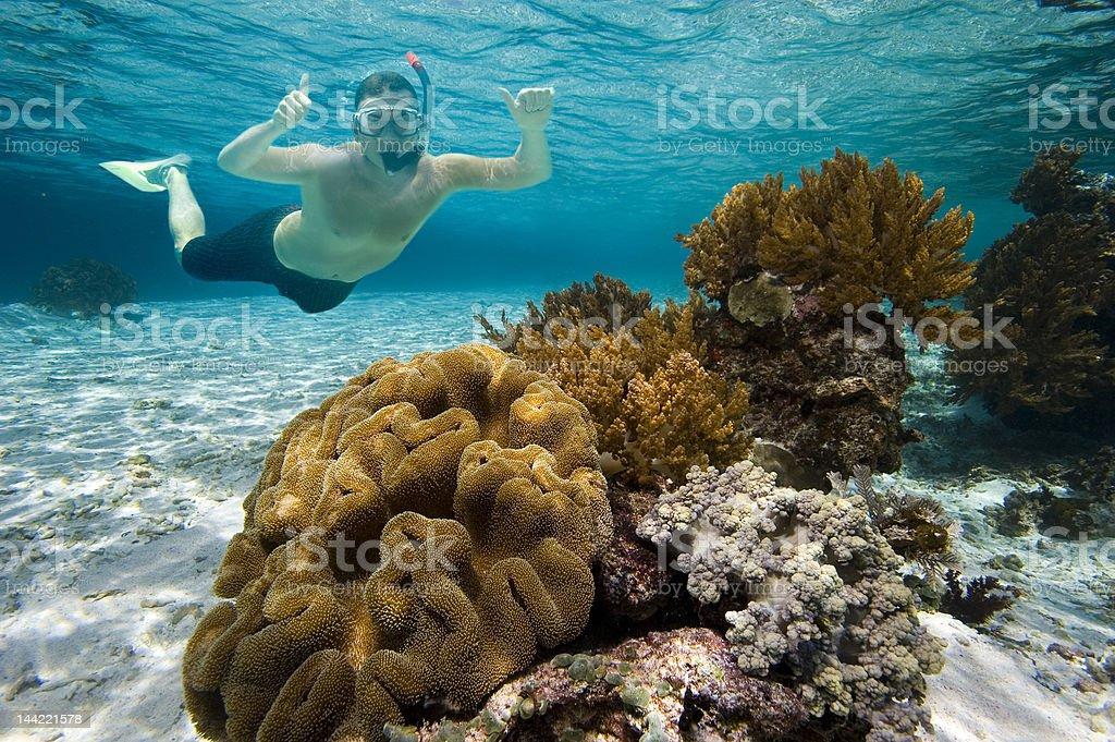 Laguna snorkeler stock photo
