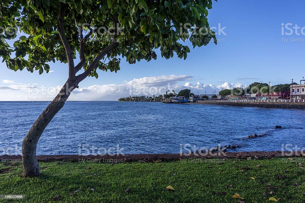 Lahaina royalty-free stock photo