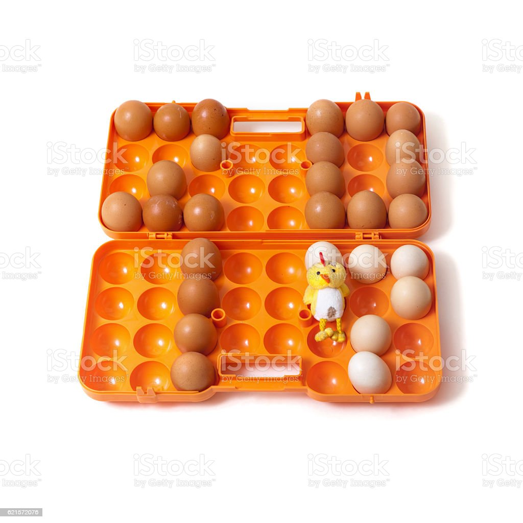 laid chicken eggs in container beside to chicken photo libre de droits
