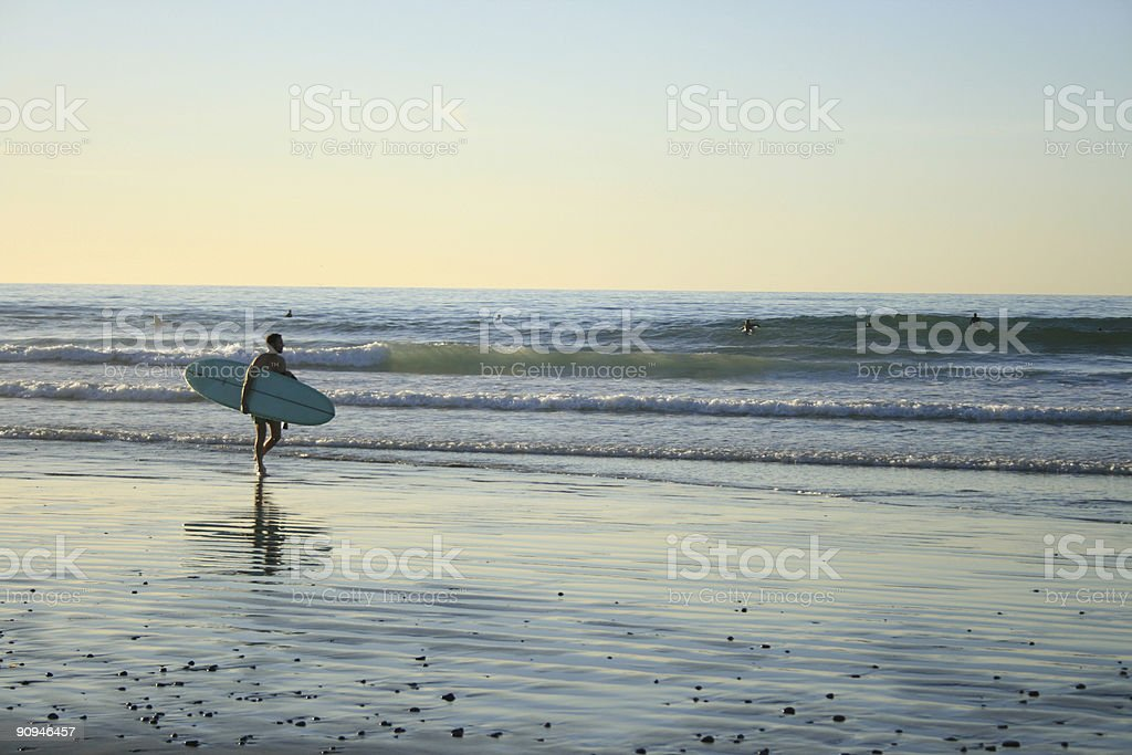 LaJolla Surfer royalty-free stock photo