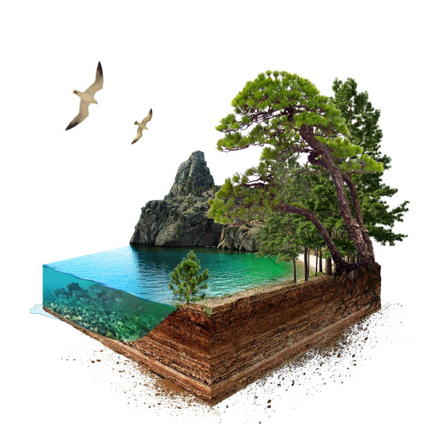 Lake. 3d isometric stock photo