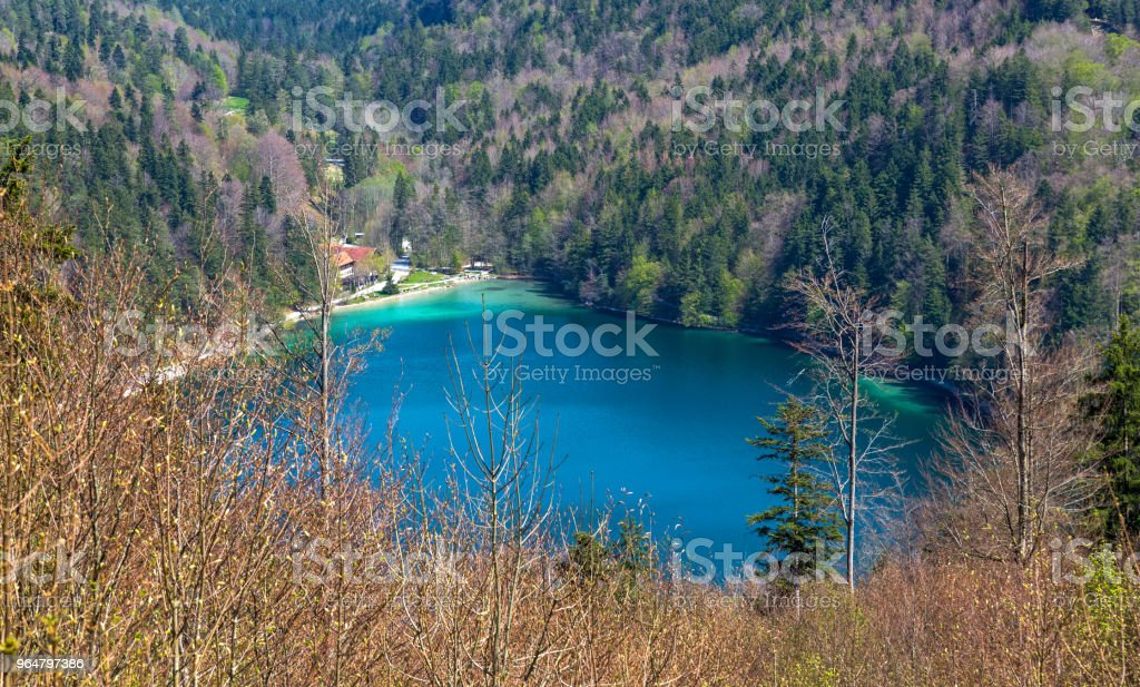 Lake Alatsee royalty-free stock photo