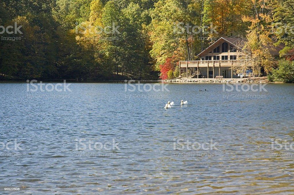 Lake Allen stock photo