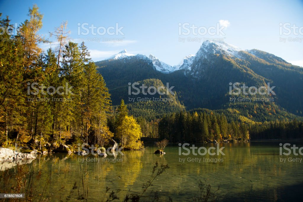 Lake and autumn forest stock photo