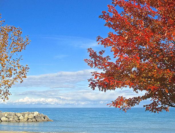 Lake and fall colors, autumn leaves stock photo