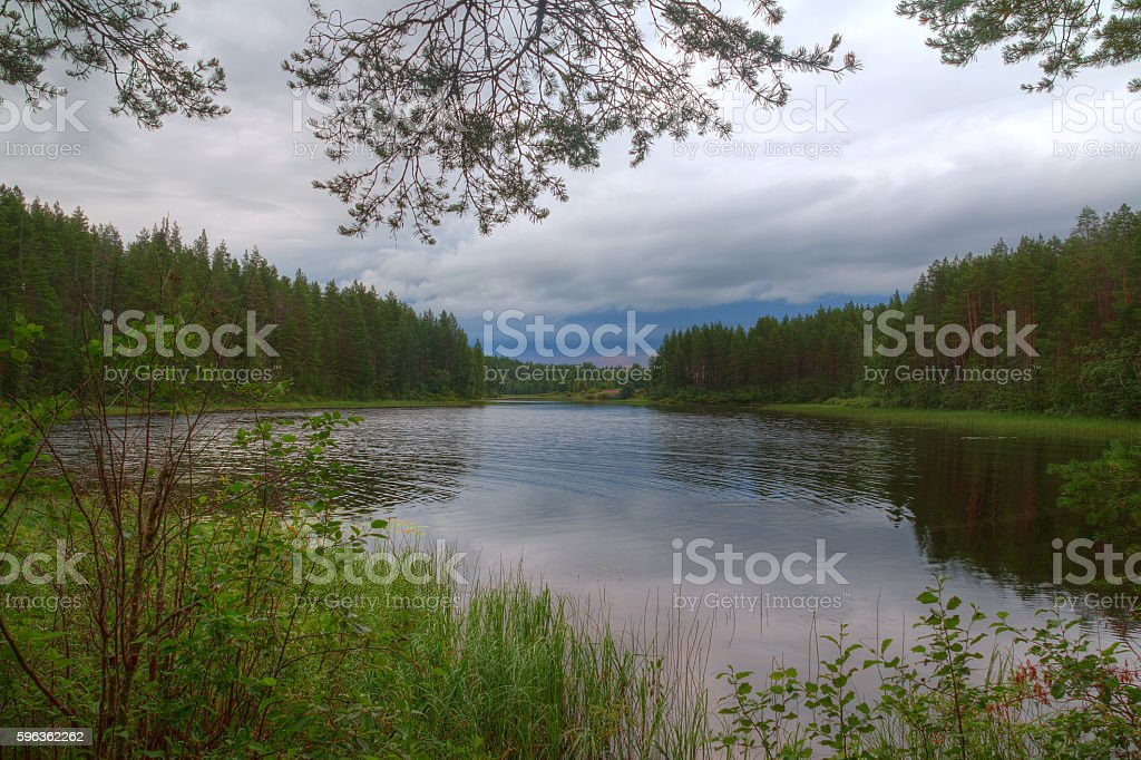 Lake and forest in cloudy day royalty-free stock photo