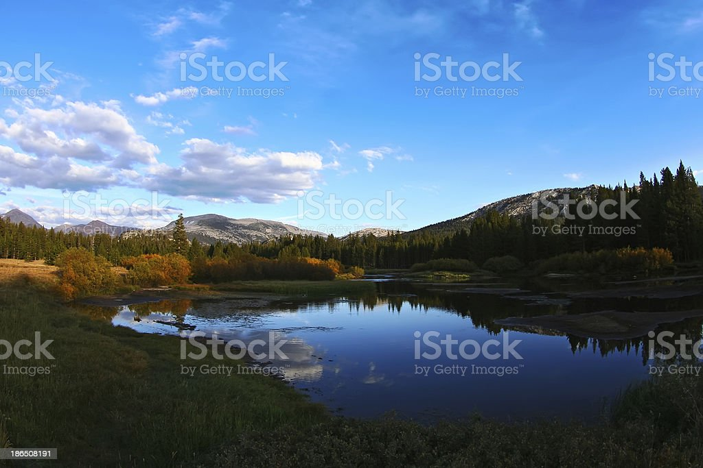 Lake and Forest Landscape royalty-free stock photo