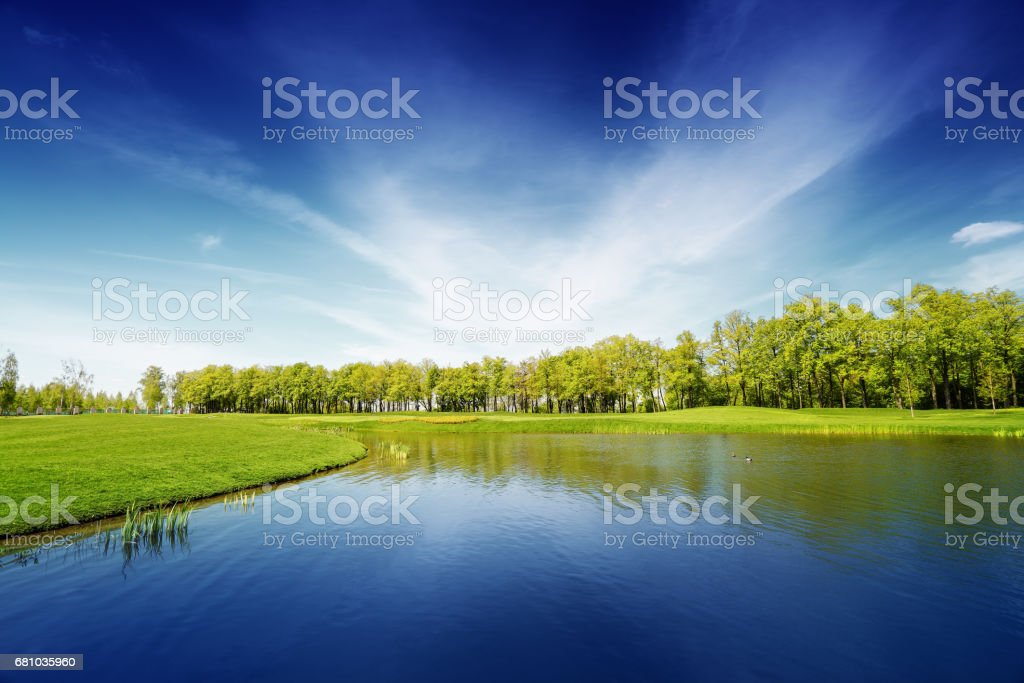 Lake and green meadow, landscape in summer day stock photo