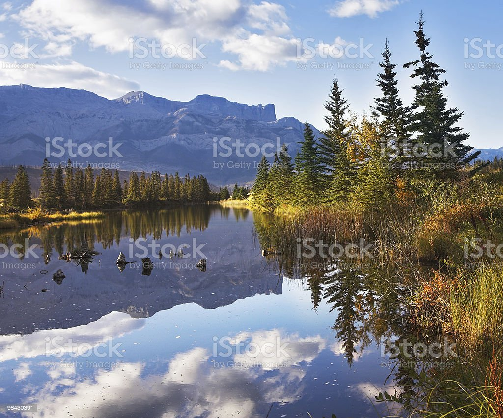 Lake and  reflections of clouds fur-trees royalty-free stock photo