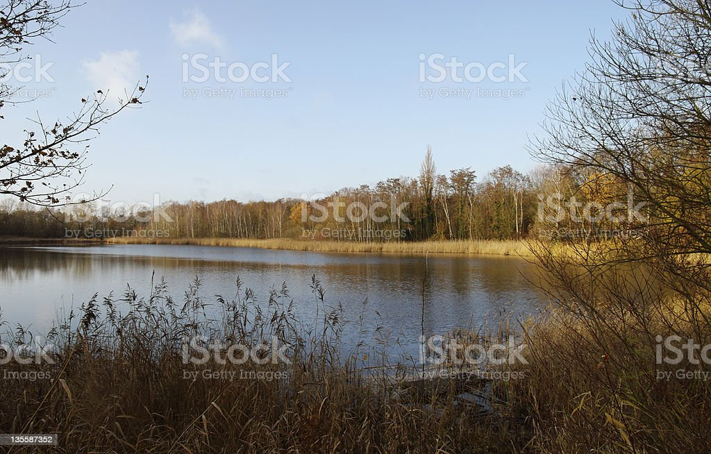 Lake at autumn royalty-free stock photo