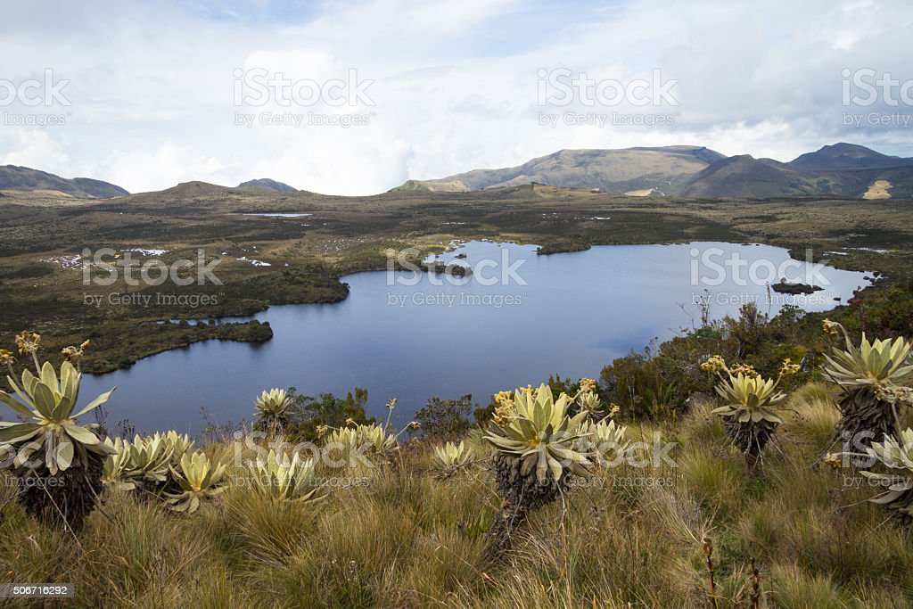 Lake at Colombia stock photo