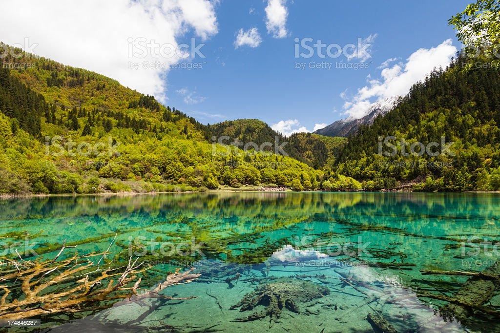 Lake at Jiuzhaigou, Sichuan, China View of the Five-Flowers Lake at Jiuzhaigou  Asia Stock Photo