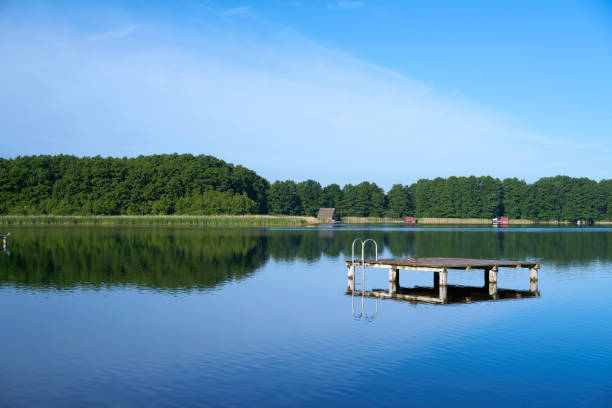 see bei mirow in der müritz-national park i - nationalpark müritz stock-fotos und bilder