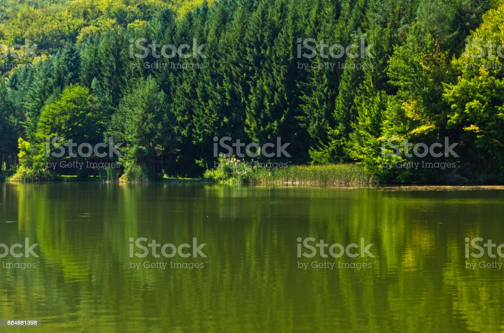 Lake at morning sunshine in Semenic national park, Banat region stock photo