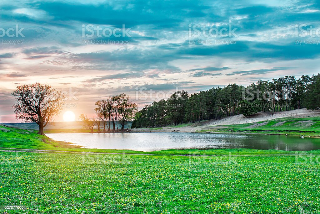 Lake at sunset in the forest among of green meadow stock photo