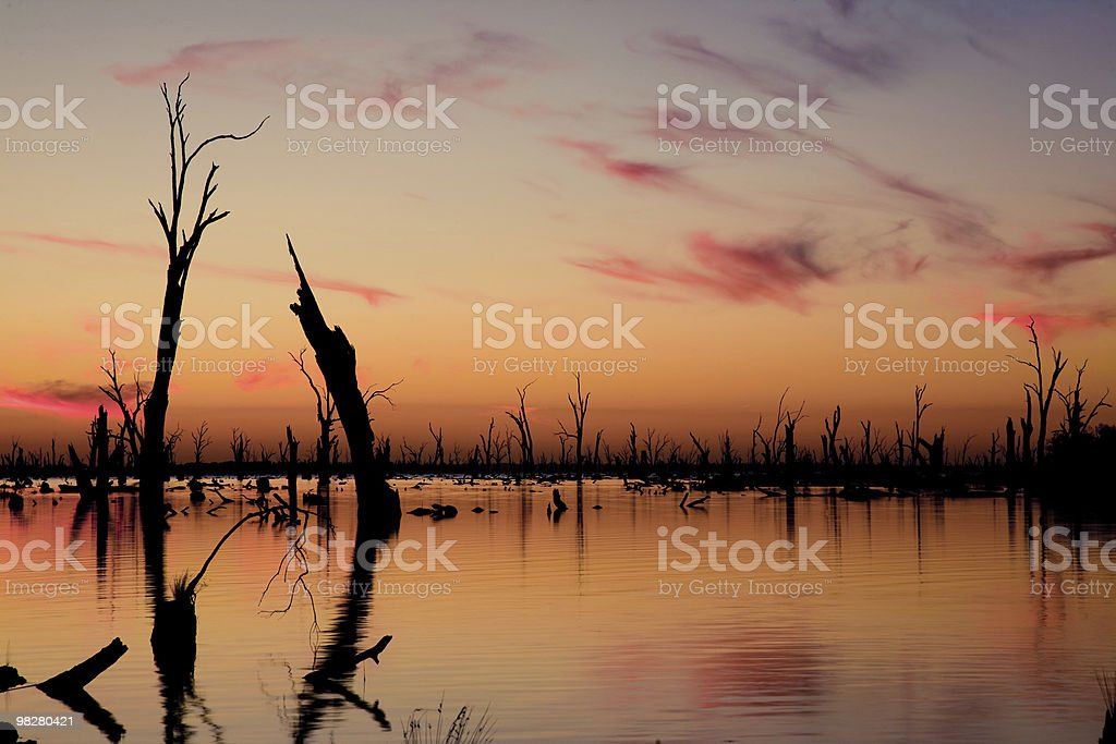 Lake at Sunset royalty-free stock photo