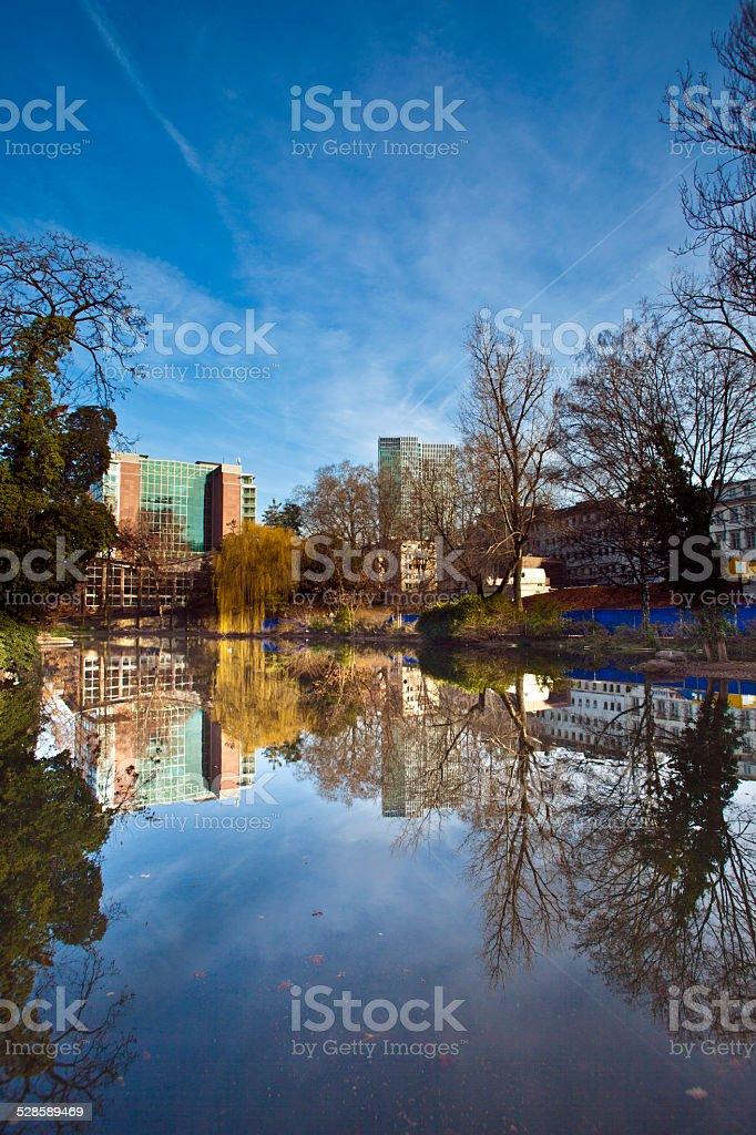 lake at the Eschersheimer Anlage in Frankfurt, Germany stock photo