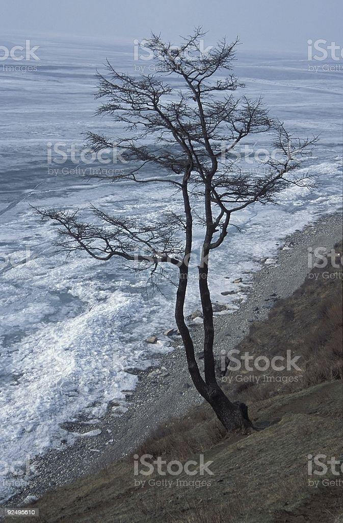 Lake Baikal royalty-free stock photo