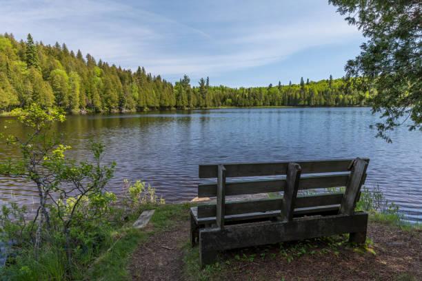 Lake Benson stock photo