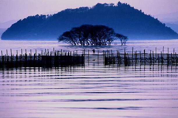 Biwa 湖の夜のミスト ストックフォト