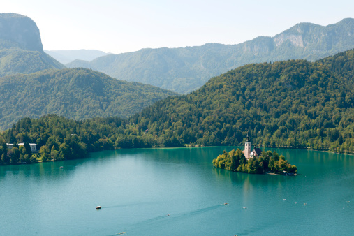 Lake Bled With Church And Rowing Teams Stock Photo - Download Image Now