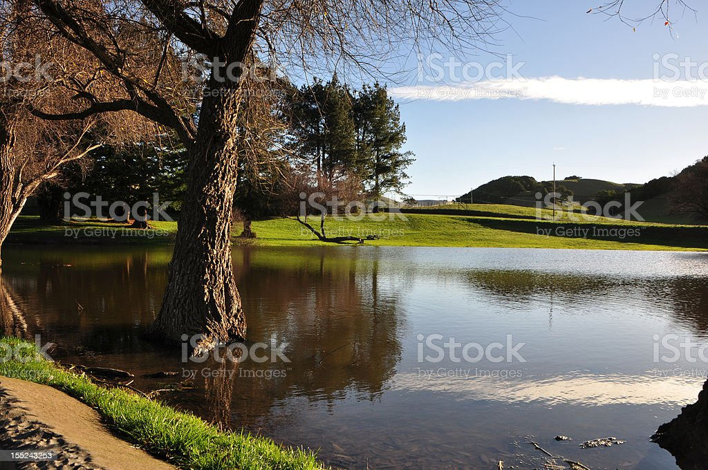 lake by cheese factory stock photo