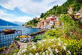 istock Lake Como, Italy 529426896