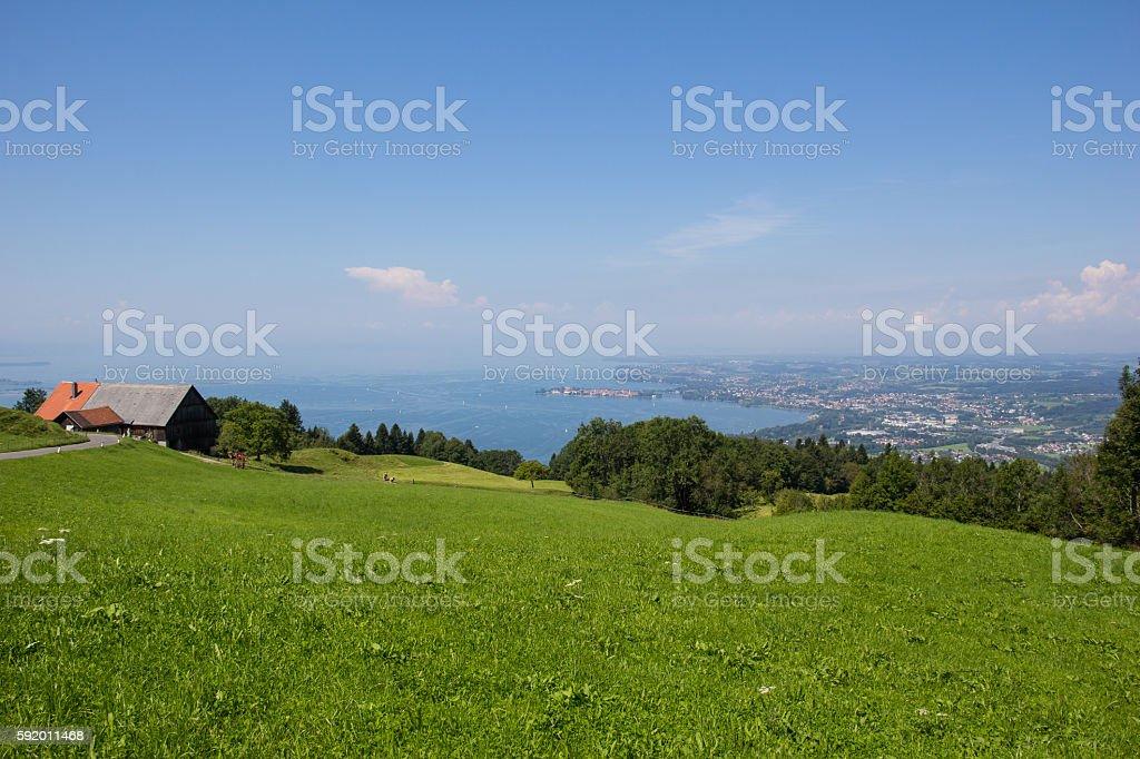 Lake Constance View In Vorarlberg Austria – Foto