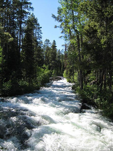 lake creek - own wilson stock-fotos und bilder