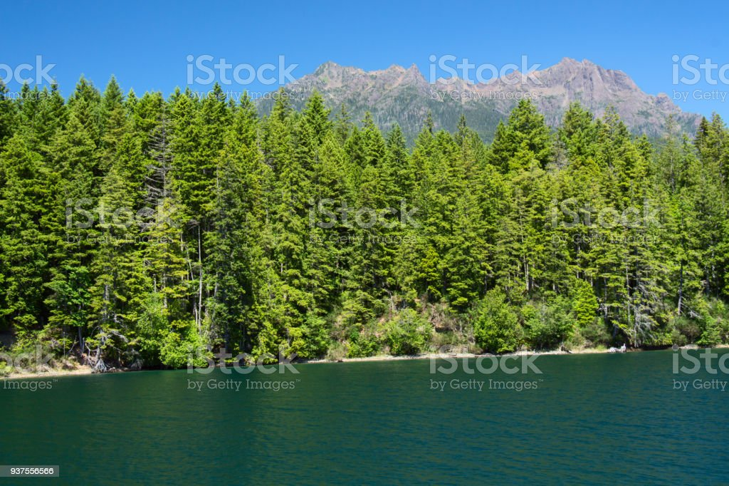 Lake Cushman and Mount Elinor in Summer stock photo