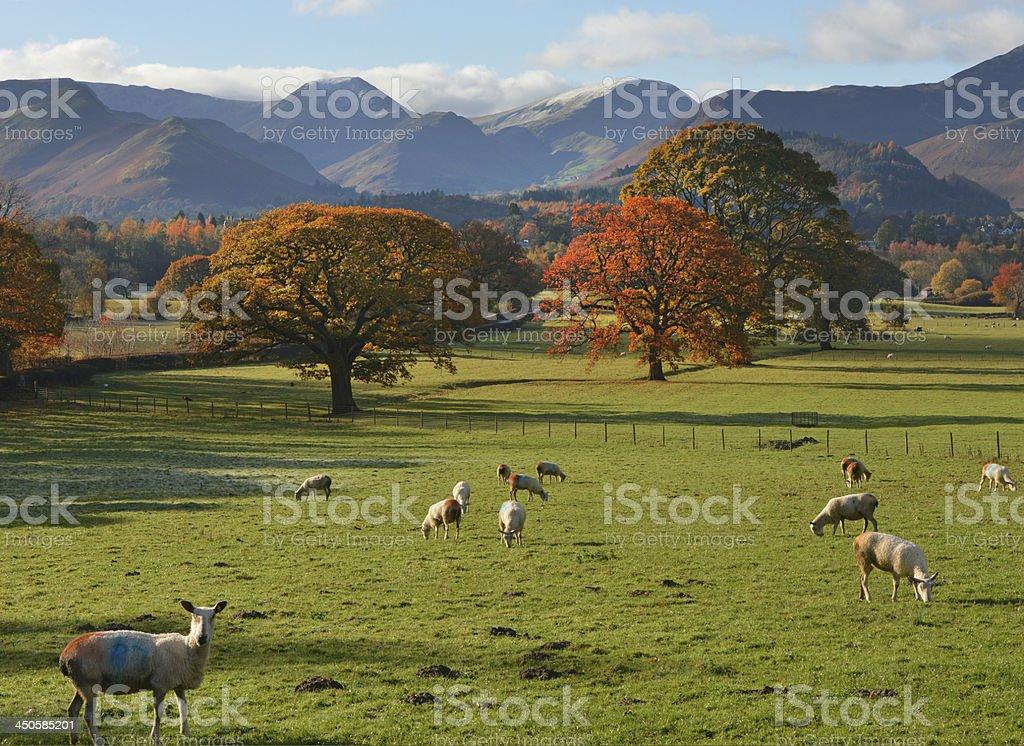 Lake District in Autumn stock photo
