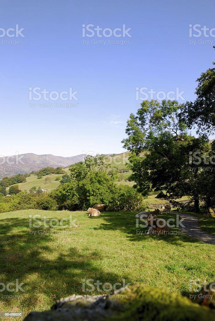 Lake District View royalty-free stock photo