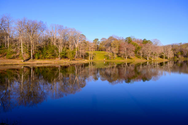 Fairfax See im Frühling – Foto