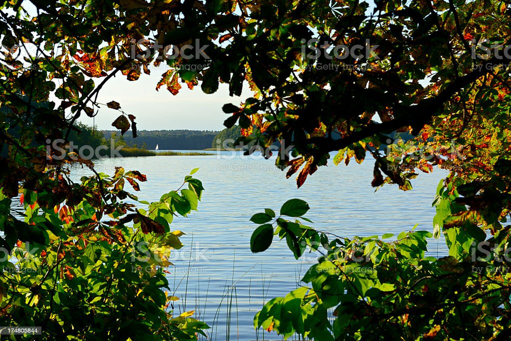 Lake framed by Trees Chestnut Tree Leafs royalty-free stock photo
