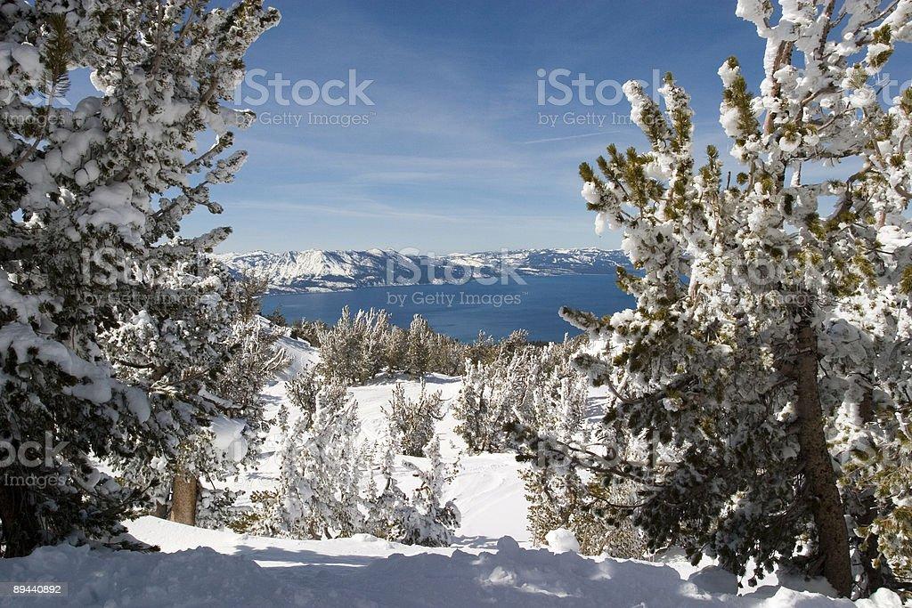 Lago Incorniciata da alberi foto stock royalty-free