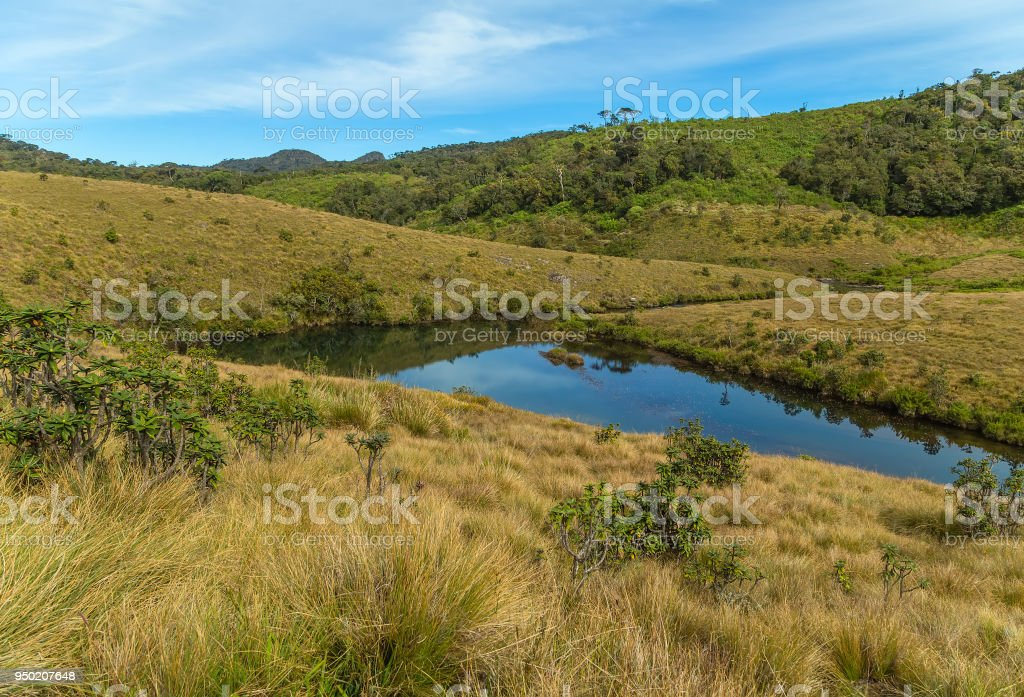 lake from small river, Horton Plains National Park highlands of Sri Lanka and is covered by montane grassland and cloud forest. Ceylon, Asia. stock photo