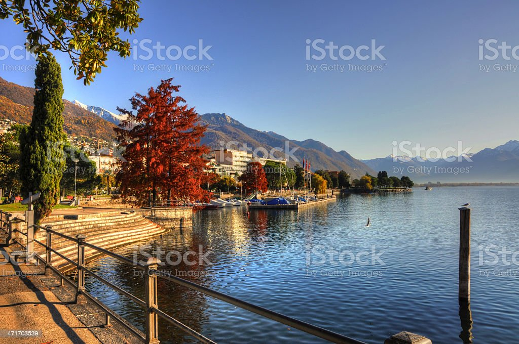 Lake front with trees stock photo
