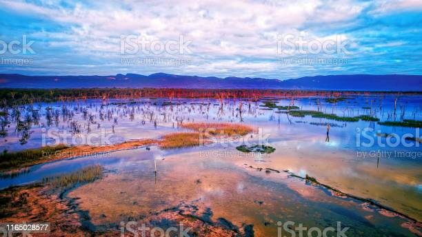 Photo of Lake Fyans at dawn