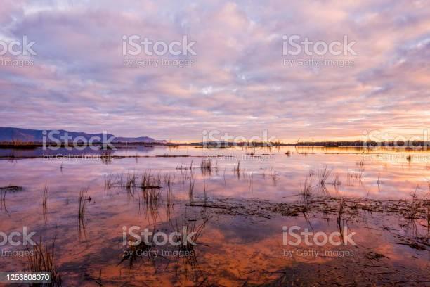 Photo of Lake Fyans